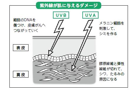 日本は紫外線対策が後れている!太陽と上手に付き合うための6つのアドバイスの画像1