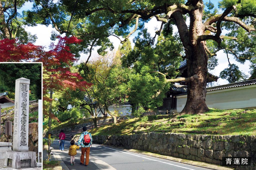 歎異抄の旅①[京都編]『歎異抄』ゆかりの地を歩むの画像5