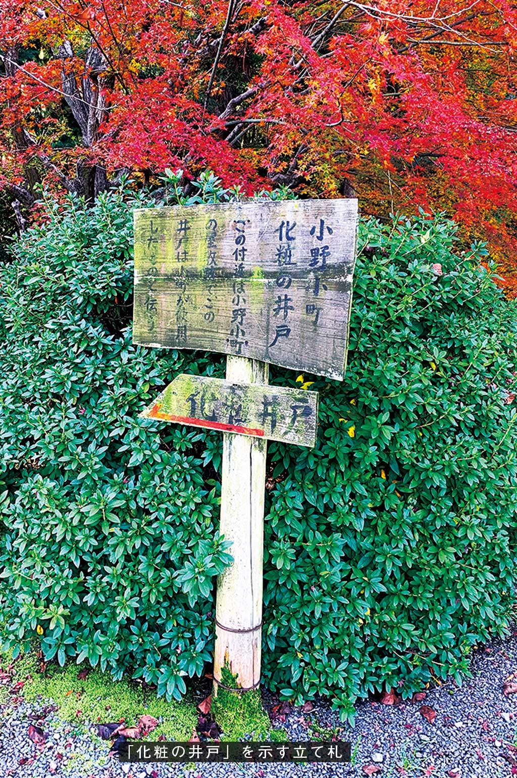歎異抄の旅②[京都編]『歎異抄』ゆかりの地を歩むの画像3