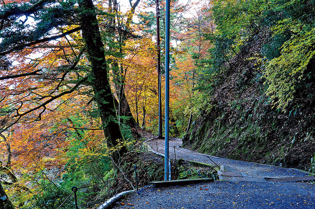 歎異抄の旅⑤[京都・比叡山編]『歎異抄』ゆかりの地を歩む〜どうして、比叡山へ修行に入ったのですか?の画像9