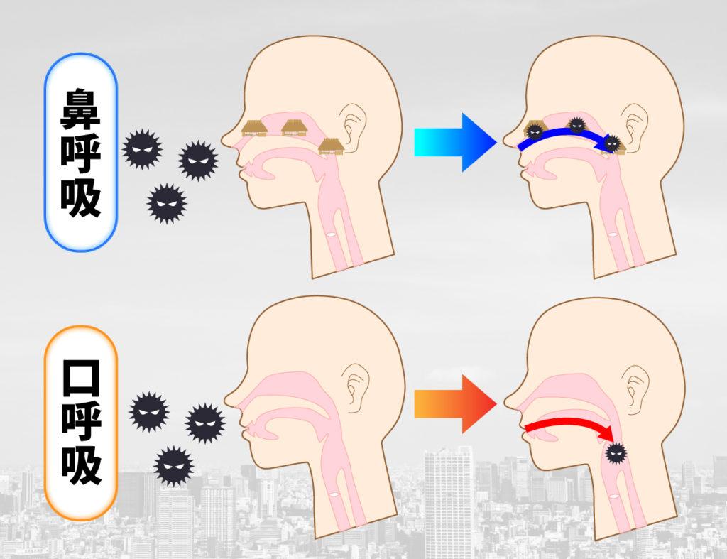 「あいうべ体操」で口呼吸から鼻呼吸へ!今からできるツインデミック予防法の画像2