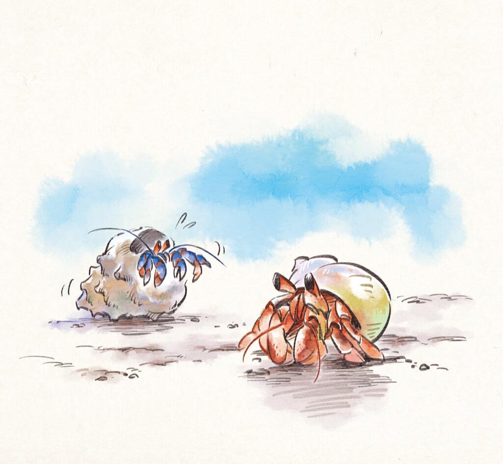 東日本大震災から10年「危険なことを、危険と知って対処する」 〜『方丈記』ヤドカリの教訓の画像1