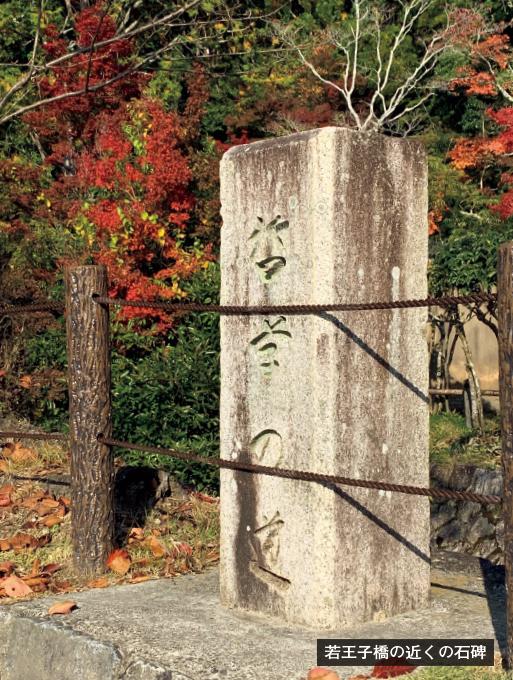 歎異抄の旅⑳[京都編]哲学の道と『歎異抄』の画像3