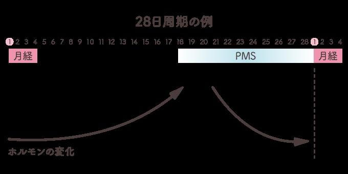 【田邉先生監修】生理前こそ要注意!PMS(月経前困難症)について詳しくご紹介の画像2
